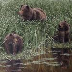 """Salad Days"" (Brown bears, coastal Alaska). Oil on canvas, 2018. 24 x 36 inches. ORIGINAL AVAILABLE, $4200 FRAMED."